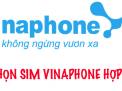 Lựa chọn sim VinaPhone hợp tuổi theo mệnh như thế nào?