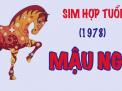 Sim năm sinh 1978 và ý nghĩa nổi bật của nó