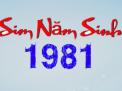 Gặt hái thành công khi sử dụng sim năm sinh 1981